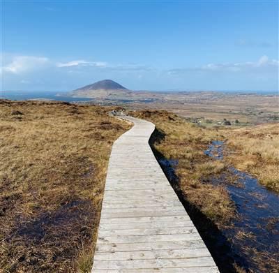 The Hiking Getaway