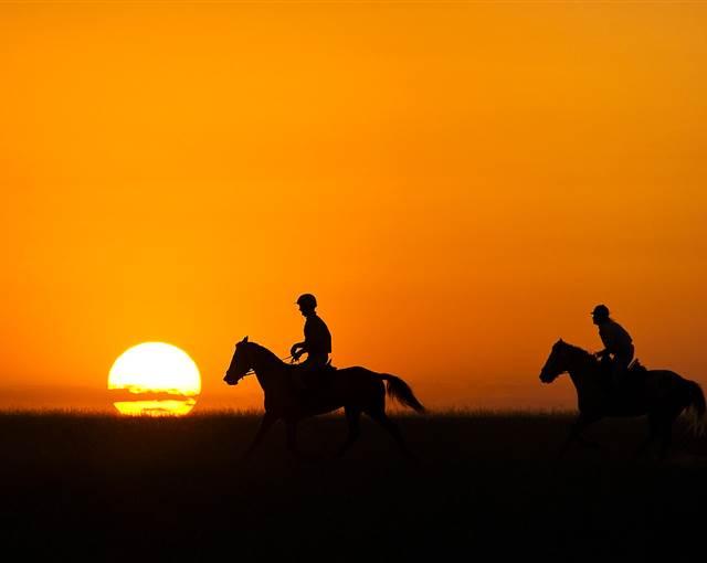 Ol Donyo Horse