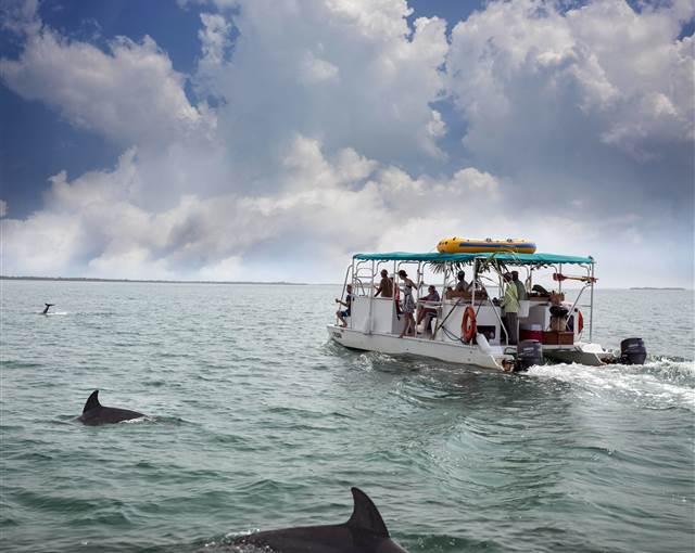 Belcampo Belize snorkeling