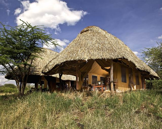 lewa safari camp family tent