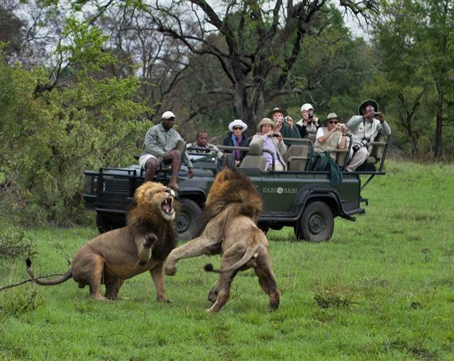 sabi sabi luxury safari lodges africa  s