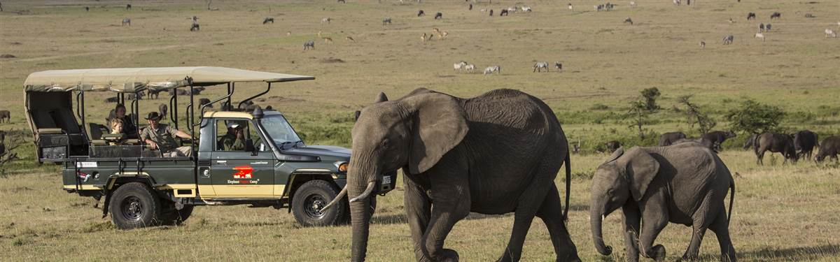 Mara  Serengeti Combo 3