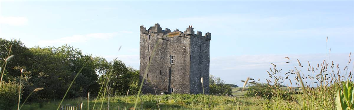 Smithstown Castle