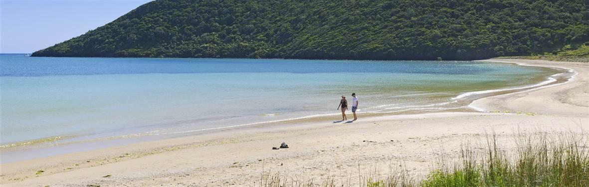 arajilla retreat lord howe island beach