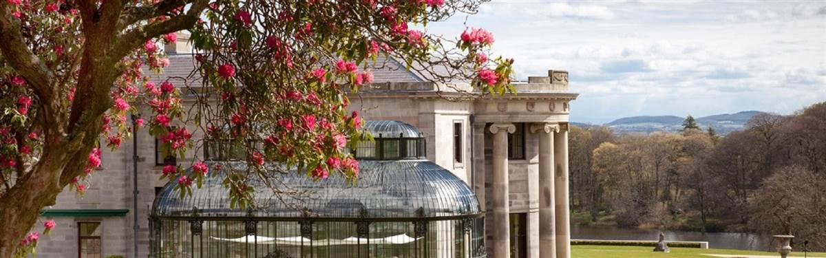 ballyfin conservatory