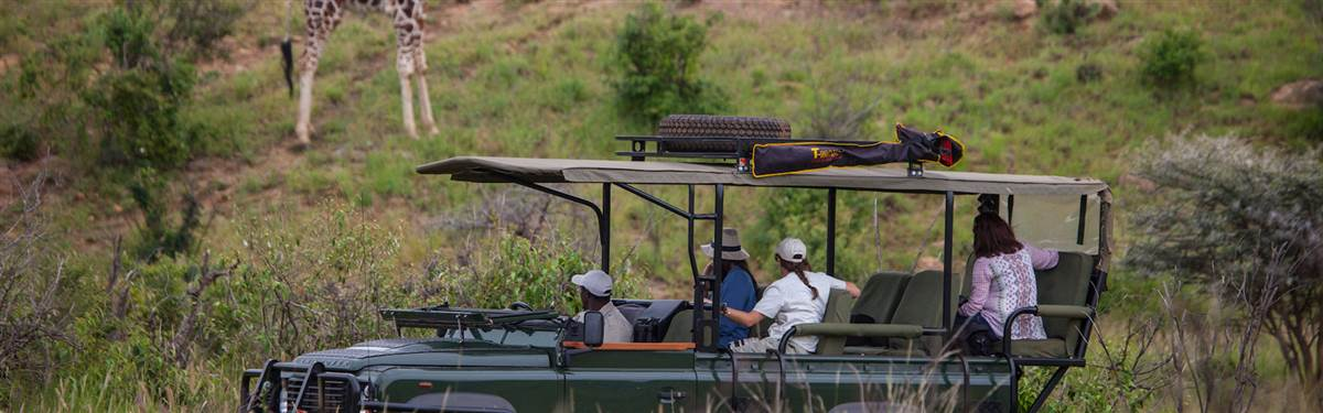 loisaba tented camp   game drives