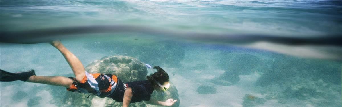 sal salis ningaloo reef snorkel highres