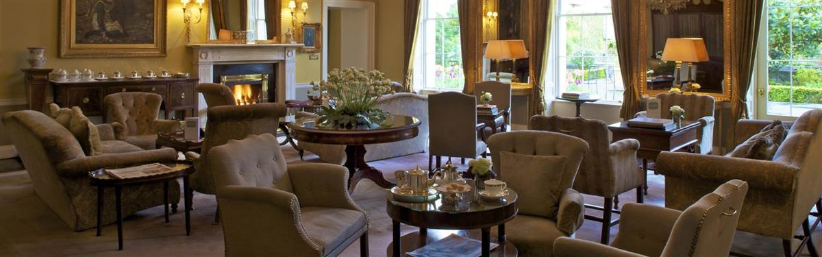 the merrion ireland drawing rooms