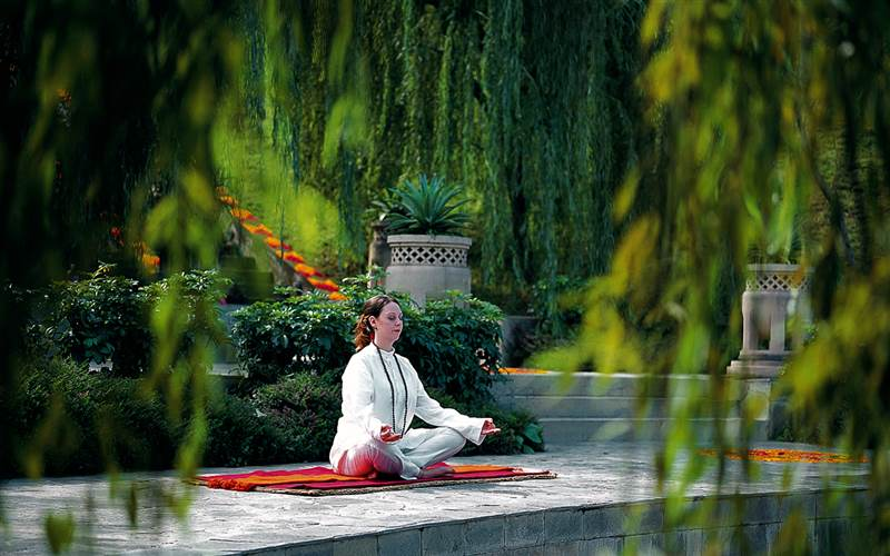 Meditation Retreat in The Himalayas. Ananda Spa Hotel
