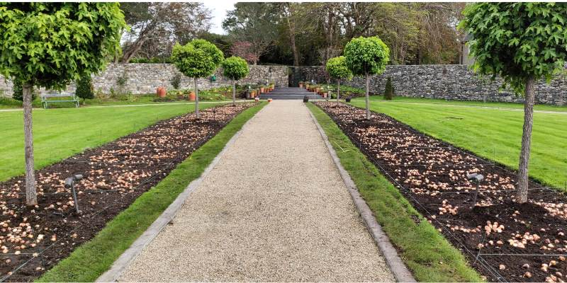 Walled Garden: Bulb Planting