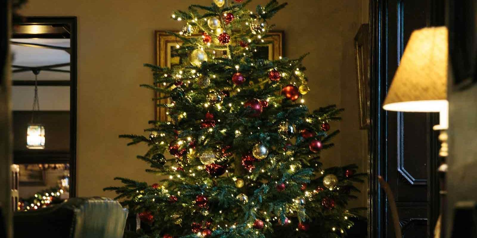 Ballynahinch Reception at Christmas