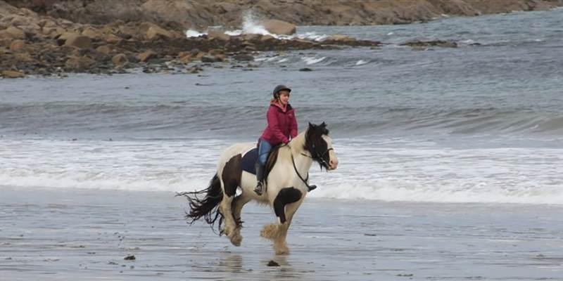 Cleggan Riding Centre