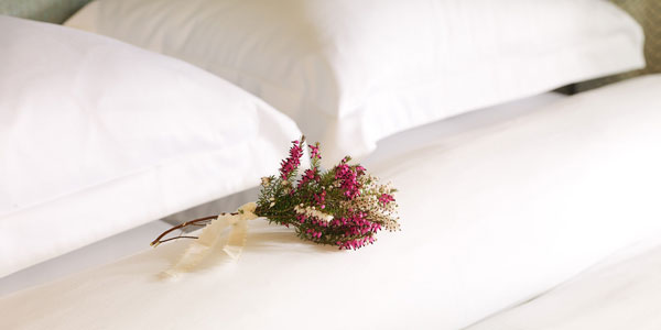 Duvet Day From €250 per person