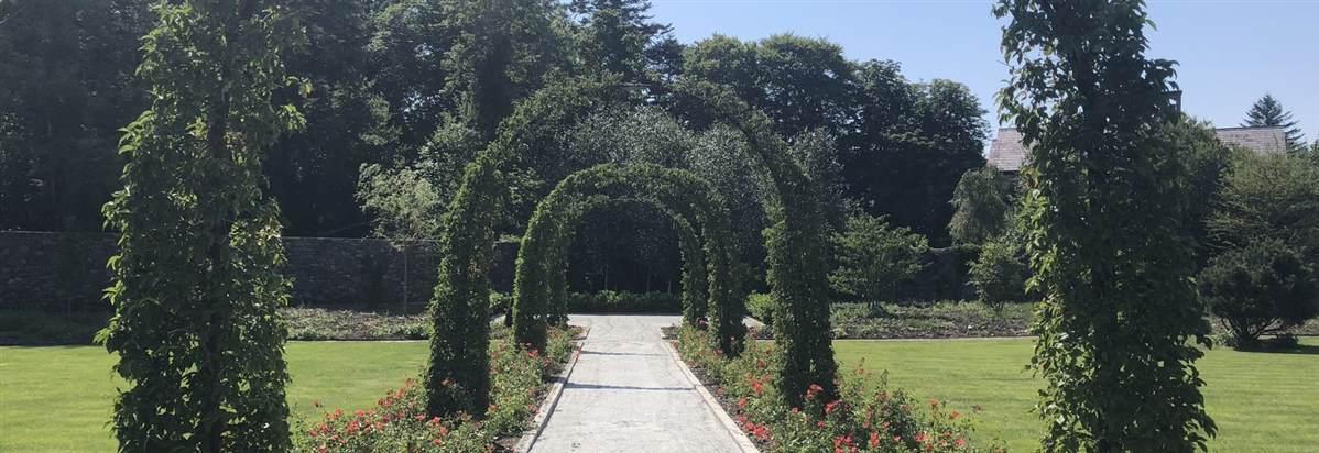 Walled garden July 2018