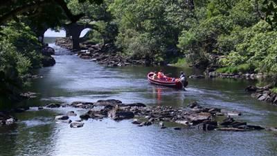 Boating Ballyseede