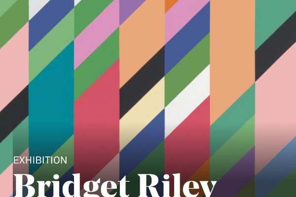 600px400px Bridget Riley