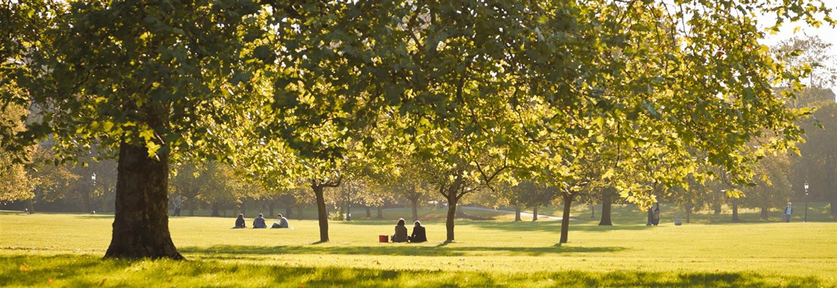 Primrose Hill and other parks in london