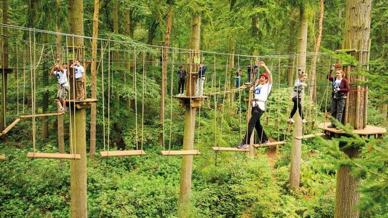 Go Ape in Delamere Forest a top childrens activity in Chester