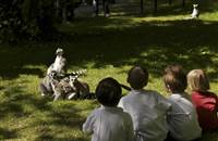 Let your Little Monkeys Run Free! Midweek Break