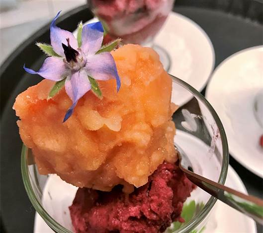 Sorbet and Flowers