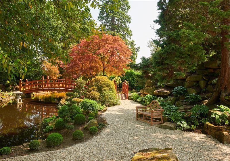 Japanese Garden (Resize)
