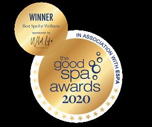 GSG 2020 winner
