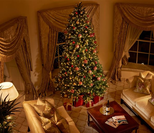 Christmas House Party Package