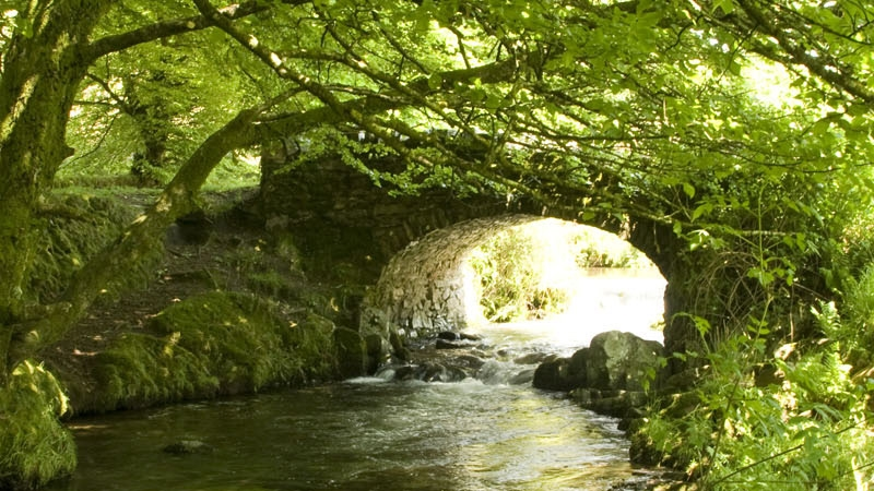 Stream and old bridge on Exmoor, Devon 2