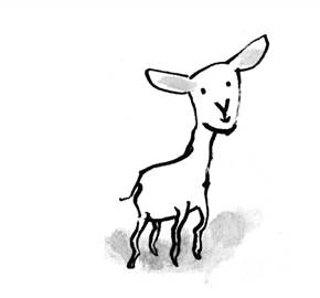 lamb rectangle