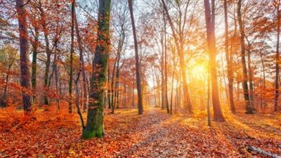 Autumn Midweek Getaway