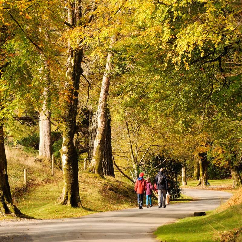 AutumnScenes 052