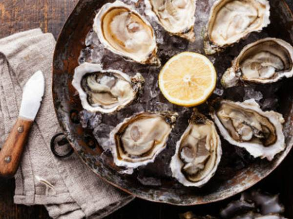 festival oysters