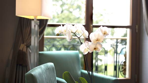 Experience top level of luxury with Our Suites Geneva