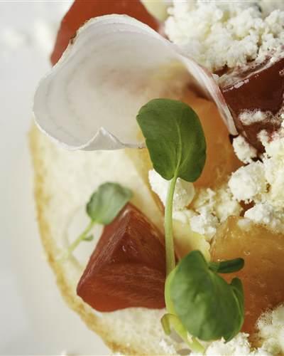 GUSTO  Carte hiver  saladine de better