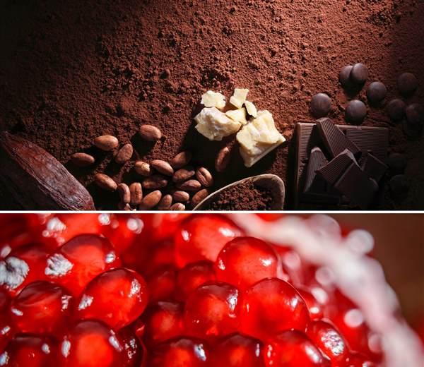 Photo buche grenade et chocolat