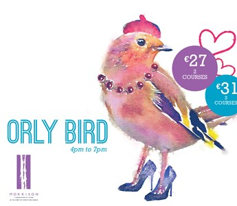Orly Bird