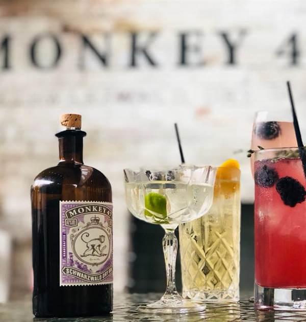 gin tastin monkey 47