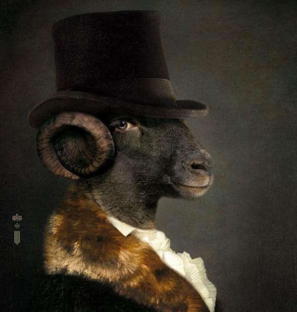 Ram portrait Content