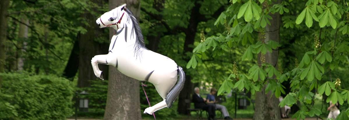 Bruntwood Park Horse Header