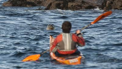 CanoeDay - Guest Blog by Inish Adventures