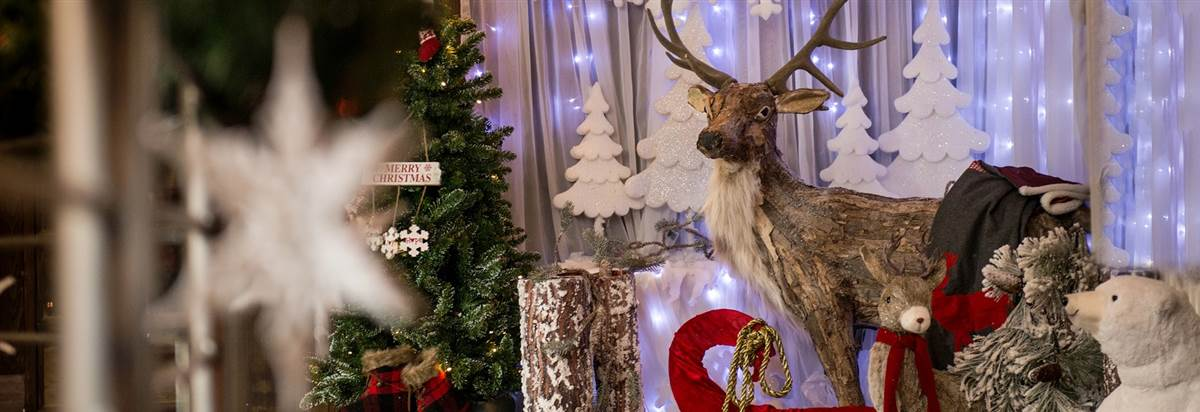 Christmas Carvery Redcastle