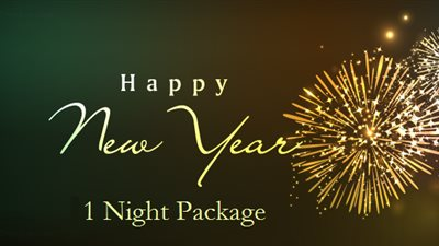 New Year's Package 2020 (1 night)