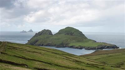 Skellig-Islands Puffin Island