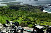 Quest Adventure 3 Nights at Golden's Cove only €525