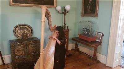 Harpist for Ceremony or Reception