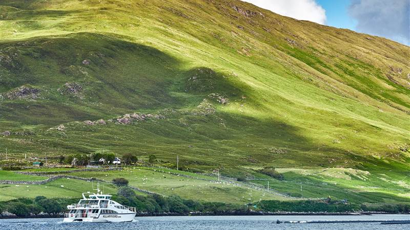 Wild Atlantic Way Experience incl Boat Tour