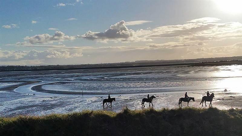 Corballis Pony Trekking