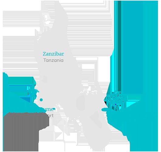 Zanzibar White Sand