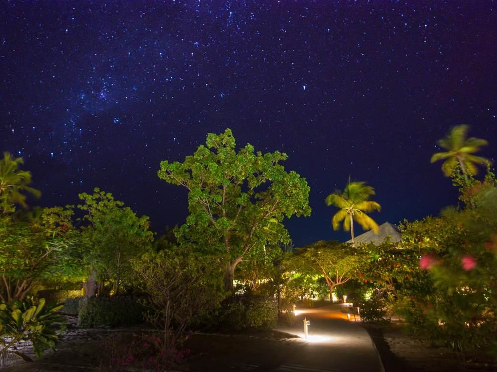 Zanzibar Night Sky