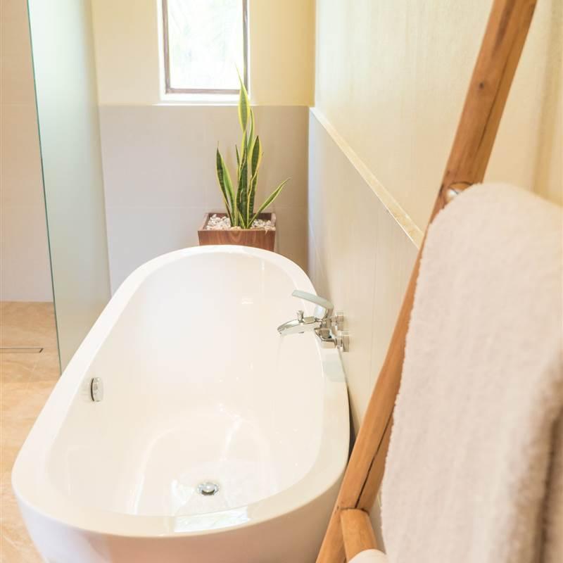 Five-bedroom Master bathroom bathtub